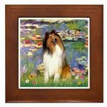 Lilies (2)/Collie (1S) Framed Tile