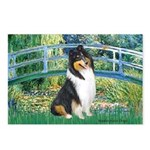 Bridge / Collie (tri) Postcards (Package of 8)