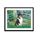 Bridge / Collie (tri) Framed Panel Print
