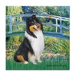 Bridge / Collie (tri) Tile Coaster