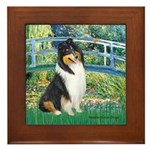 Bridge / Collie (tri) Framed Tile
