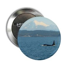 "Orca Bull with Mount Baker 2.25"" Button"