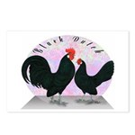 Black Dutch Chickens Postcards (Package of 8)