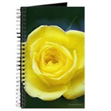 Yellow Rose Journal