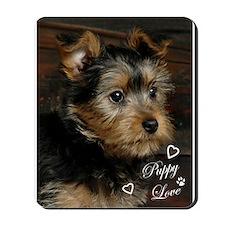 SILKY terrier Dog - Mousepad