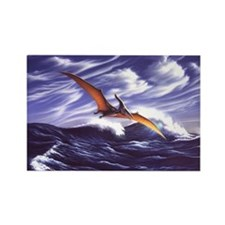Pteranodon 2 Rectangle Magnet (10 pack)
