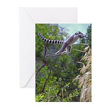 Leaping Lemur Greeting Cards (Pk of 10)