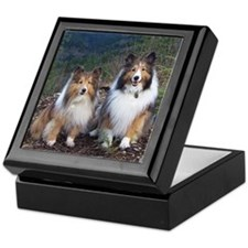 Cute TWIN SHELTIE Photo Portrait Keepsake Box