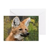 Maned Wolf Greeting Cards (Pk of 10)