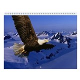 Bald Eagles Wall Calendar