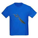 preying mantis T