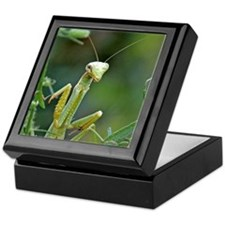 Mantis 475 Keepsake Box