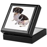 Black & White Doxie Keepsake Box