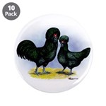 Crevecoeur Chickens 3.5