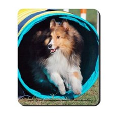Sheltie Tunnel Mousepad