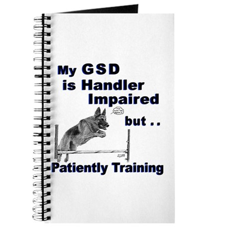 GSD Agility Journal