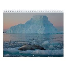Antarctic Wall Calendar