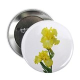 "Yellow Iris 2.25"" Button"
