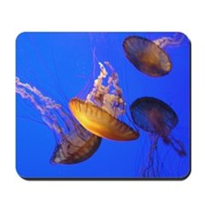Helaine's Jellyfish Mousepad