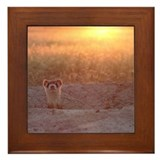 Black-Footed Ferret Framed Tile