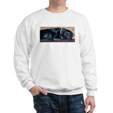 Couch Potato Sweatshirt