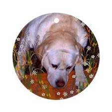 Cute Yellow labradors Ornament (Round)