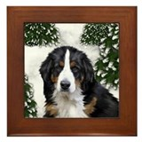 BERNESE MOUNTAIN DOG SNOW FOREST Framed Tile
