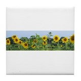 Sunny Sunflower Row Tile Coaster