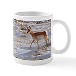 Pronghorn, Antelope Mug