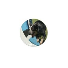 Blue Heeler Agility Artwork Mini Button (100 pack)