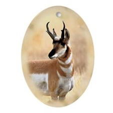 Antelope Oval Ornament