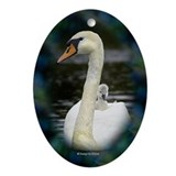 Swan and gosling Oval Ornament