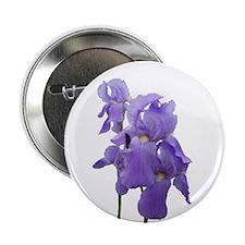 "Purple Iris Photographic Art 2.25"" Button (10 pack"