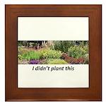 I didn't plant this Framed Tile