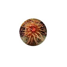 Helaine's Sea Anemone Mini Button
