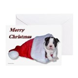 Santa hat Boston Cards (Pk of 10)