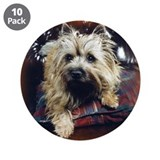 "Cairn Terrier 3.5"" Button (10 pack)"