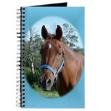 Horse Journal