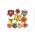 Ten Daylilies Postcards (Package of 8)