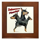 Dobie Trio2 Framed Tile