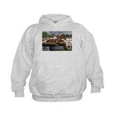 Funny Chase Hoody