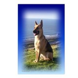 German Shepherd dog Postcards (Package of 8)