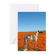 Cute Sloughi Greeting Cards (Pk of 10)