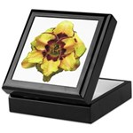 Peach Double Daylily Keepsake Box