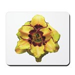 Peach Double Daylily Mousepad