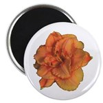 Coral Double Daylily Magnet