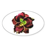 Dark Purple Daylily Oval Sticker