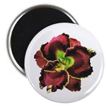 Dark Purple Daylily Magnet