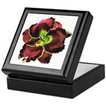Dark Purple Daylily Keepsake Box