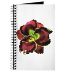 Dark Purple Daylily Journal
